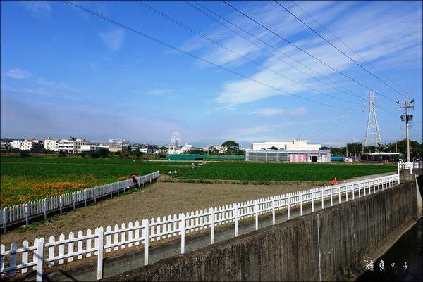 2016薯意后里 (8).JPG