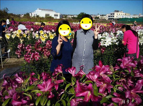 2015后里百合節.jpg
