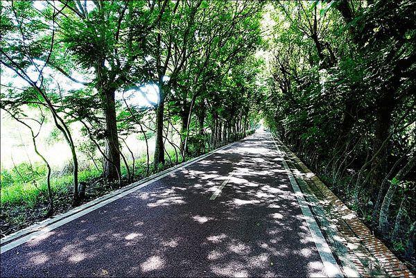 后豐鐵馬道 (8).JPG